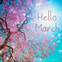 Your March Forecast Revealed